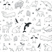 Arctic and antarctic polar doodle cartoon animals illustrations hand drawn seamless pattern