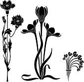 Art Nouveau style decorative elements. Black stylized flowers. Stencils.