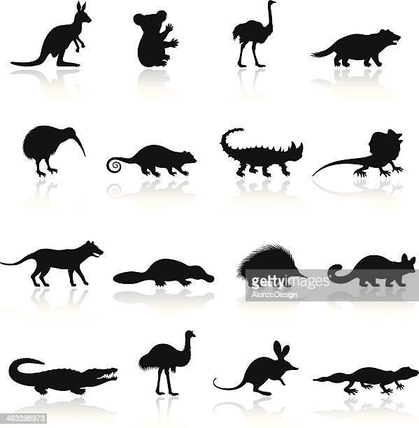 Australian Animal Icon Set