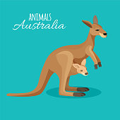 Australia kangaroo animal mother with child in pocket on blue background. Vector illustration of isolated australian marsupial brown animal with baby in flat style. Tropical herbivorous creature