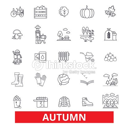 Autumn, fall, foliage, season, cold weather, harvest, thanksgiving, festivities line icons. Editable strokes. Flat design vector illustration symbol concept. Linear signs isolated on white background