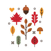 Autumn leaves design elements. Flat style vector illustration.