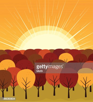 Autumn forest with sun : Vector Art