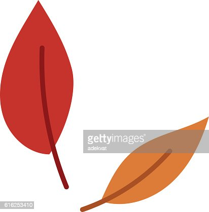 autumn leaf vector illustration. : Vector Art