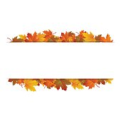Autumn leaves around blank rectangle. Vector banner.