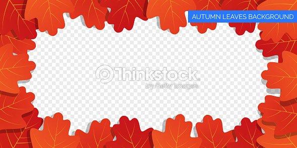 Las hojas de oto o marco sobre fondo transparente follaje - Descargar autumn leaves ...