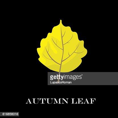 autumn leaves isolated on black background. simple cartoon flat style : Vector Art