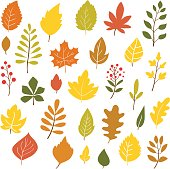 Autumn leaves, hand drawn style, vector illustration
