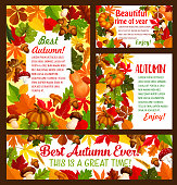 Autumn time posters and banners of falling leaves, pumpkin and mushroom harvest or rowan berry. Vector best fall design of maple leaf, oak acorn and autumn for or pine tree cones for seasonal wishes