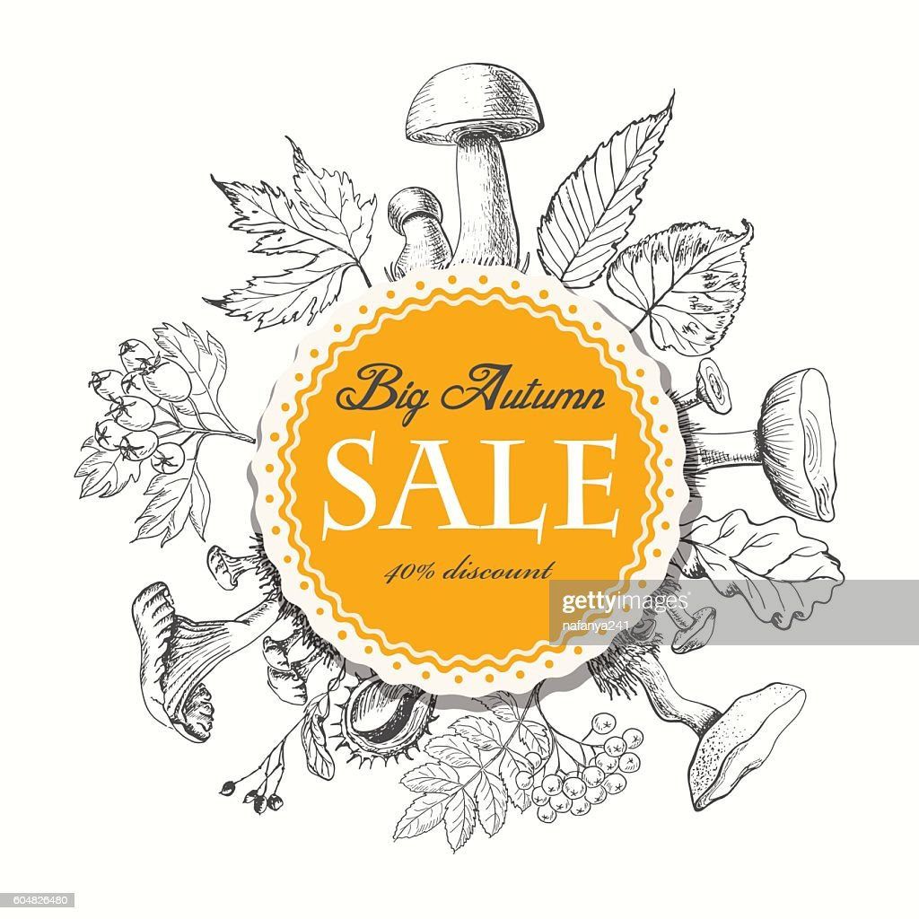Autumn sale vector banner with leaves and mushrooms