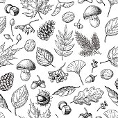 Autumn seamless vector pattern with leaves, berries, fir cones, nuts, mushrooms and acorns. Detailed forest botanical background. Vintage fall seasonal decor. Oak, maple, chestnut leaf drawing.
