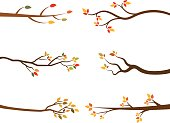 Autumn set of stylized tree branch silhouettes.
