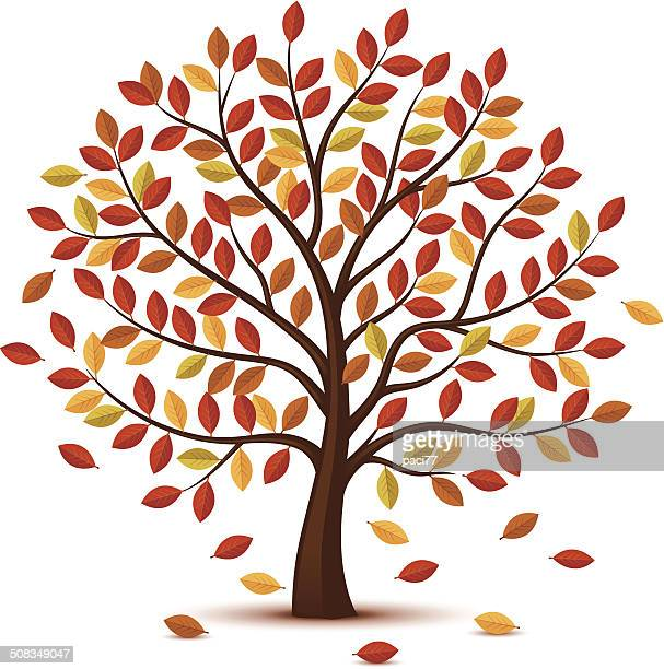 Autumn Tree design