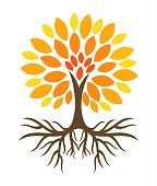 Autumn tree with roots illustration