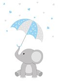 A baby elephant holding a blue umbrella