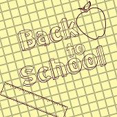 written back to school on grid paper ruler apple vector illustration