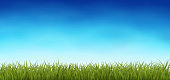 Background with fresh green grass, with blue cky, spring or summer realistic vector background, Eps 10 contasins transparency.