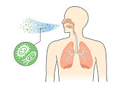 Bacteria and Fungi into respiratory of human from breathe. Illustration about air pollution.