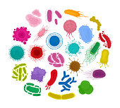 Bacteria and microorganisms in circle. Set virus cells isolated on white background. Vector illustration. Flat style. EPS 10.