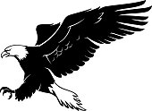 Isolated vector illustration of eagle side view with spread wingspan.