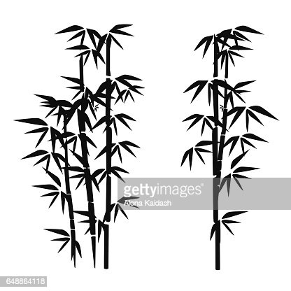 Bambus Vektorgrafik Thinkstock