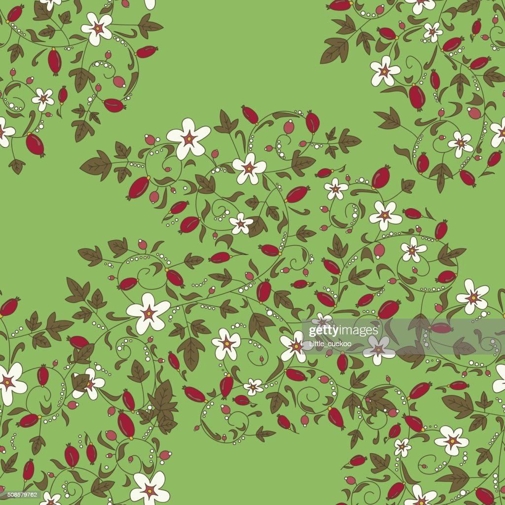 barberry pattern. seamless floral texture with berries : Vector Art