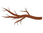 Bare brown tree branch without leaves isolated on white background. Autumn or winter branch. Vector Illustration