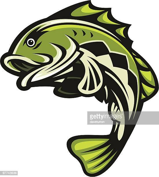 Bass Fish Jumping