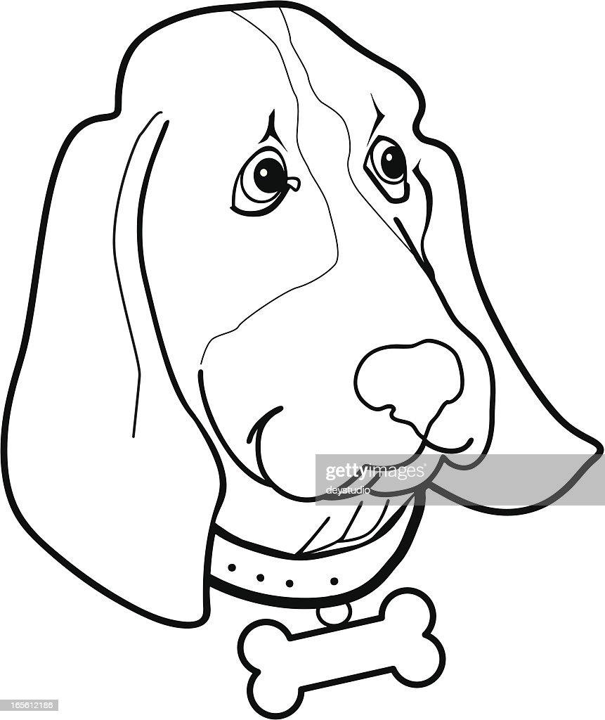 bassett hound cartoon vector art getty images