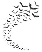 Bats swarm. Vector dark bats silhouettes swirl flying for nocturnal halloween october nature decoration
