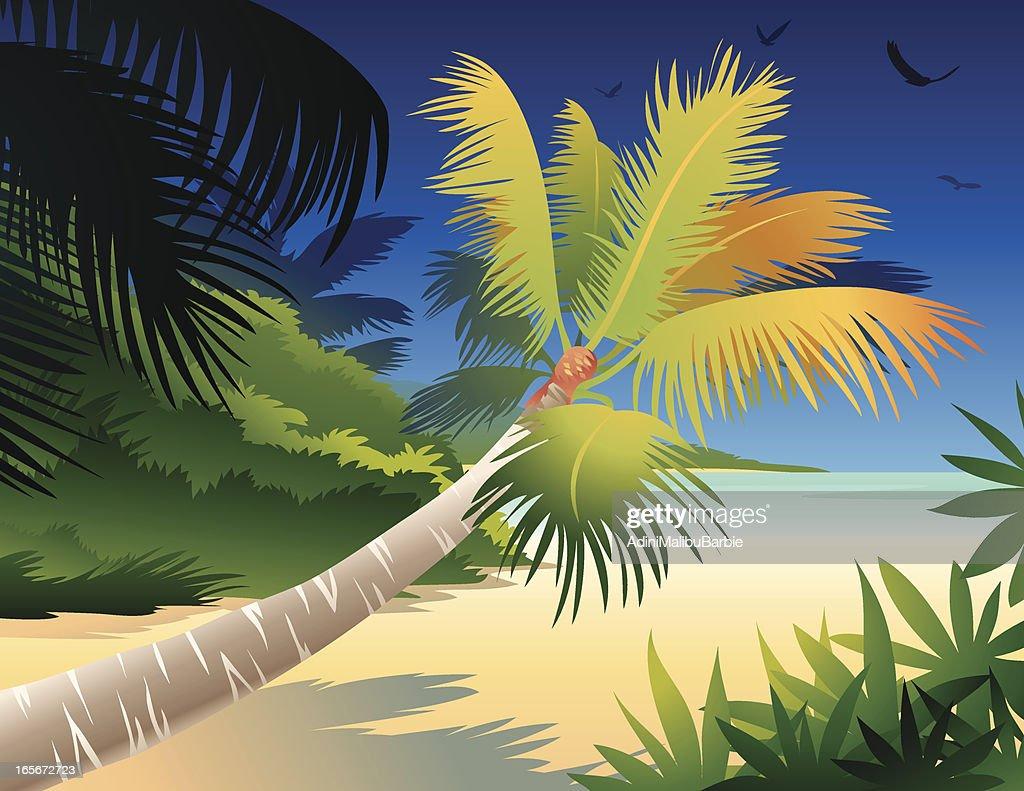 Tropical Island Cartoon: Beautiful Cartoon Tropical Island Vector Art