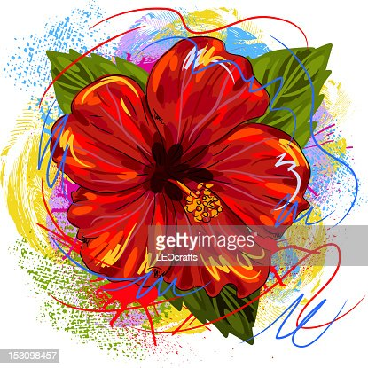 Beautiful Hibiscus Flower : Vector Art