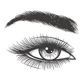 Beautiful lady eye hand drawn vector illustration. Closeup woman mascara makeup sketch isolated on white background