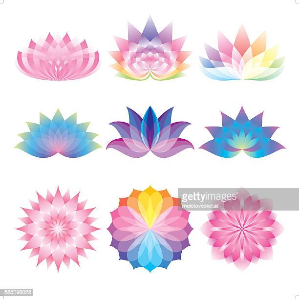 beautiful lotus set