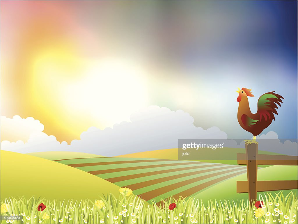 Beautiful morning : Vector Art