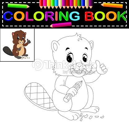 Libro Para Colorear Castor Arte vectorial   Thinkstock