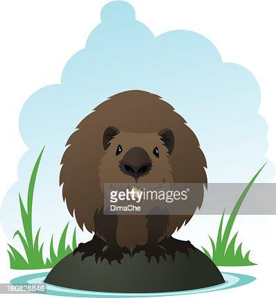 Beaver : Vector Art