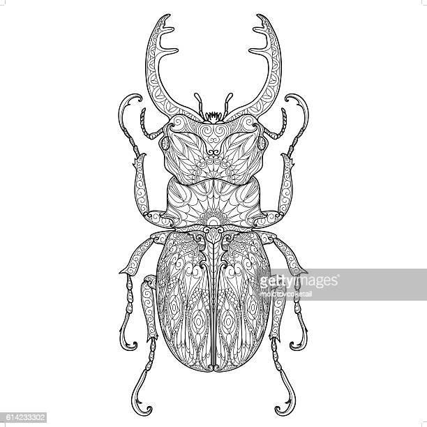 beetle doodle pattern 4