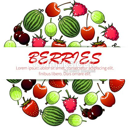 Berry fruit poster for food and drink design