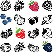 Berry fruit icon collection - vector illustration