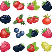 Berry fruit collection - vector color illustration