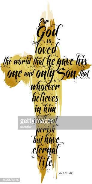 Bible John 3-16 NIV