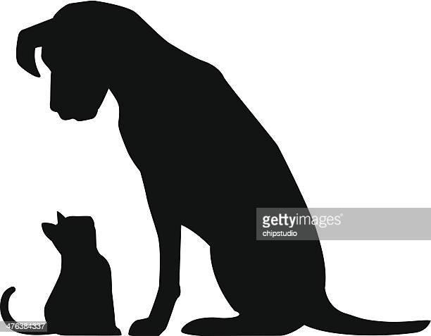 Big Dog Little Cat