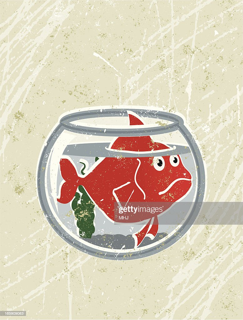 Big goldfish in a small bowl vector art getty images for Big fish screen printing