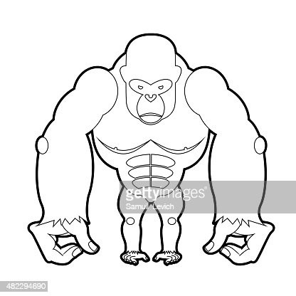 Big Gorilla Coloring Book Vector Illustration Of African