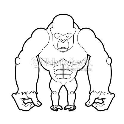 Big Gorila Libro Para Colorear Ilustración Vectorial De Animales ...