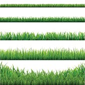 Big Grass Borders Set. Vector Illustration EPS10. Contains transparency.