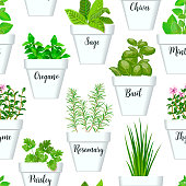Big icon seamless pattern vector set of culinary herbs in white pots with labels. Green growing basil, sage, rosemary, chives, thyme, parsley, mint, oregano with text. Gardening. For advertising, wrap
