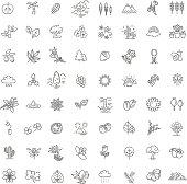 Set of Outline Natural Icons Vector Illustration