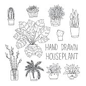 big set of hand drawn houseplants monstera, bamboo, cactus, fern and other doodle houseplants in flowerpots.